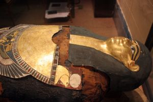 Hor - Swansea Museum's Egyptian Mummy