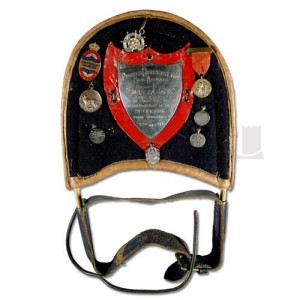 Swansea Jack - Harness and Badges